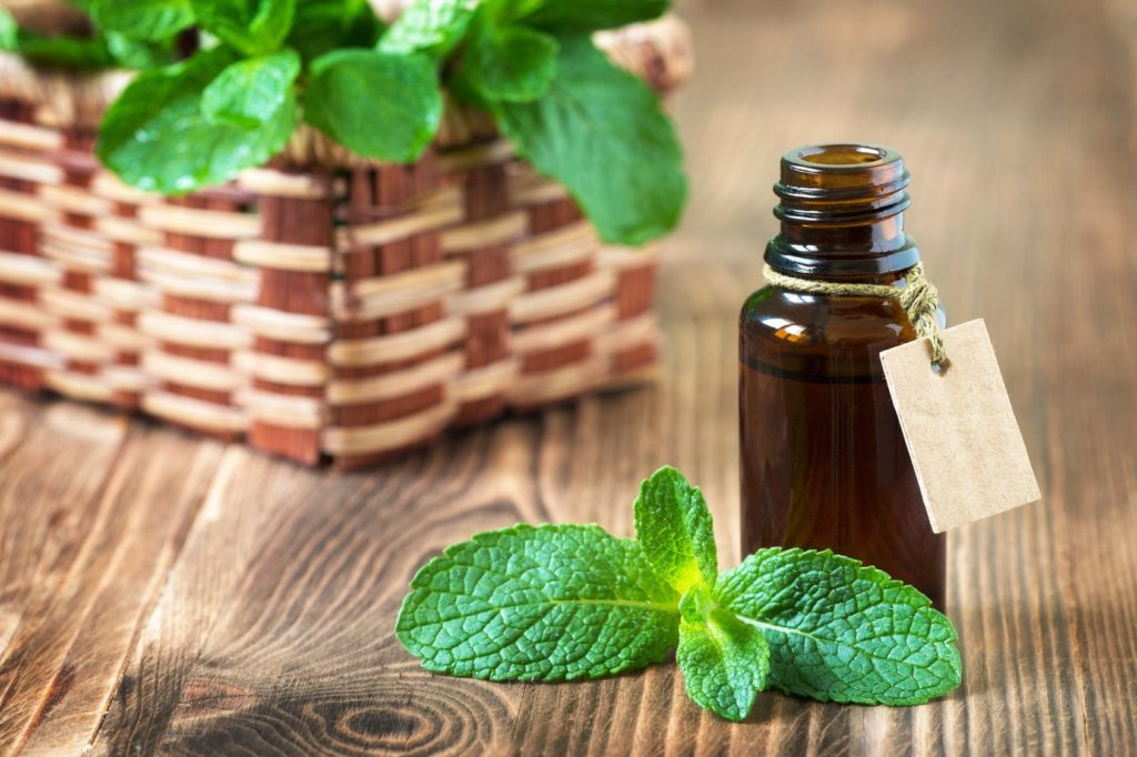 Hair Loss Treatment-Peppermint Oil